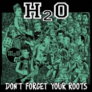 Review: H2O - Don't Forget Your Roots
