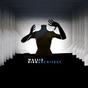 Review: Wallis Bird - Architect