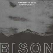 DVD/Blu-ray-Review: Bison - You Are Not The Ocean You Are The Patient