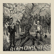 Diamond Dogs: Diamond Dogs